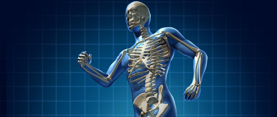 Lo dimostra la storia: attività fisica, tutta salute per le ossa
